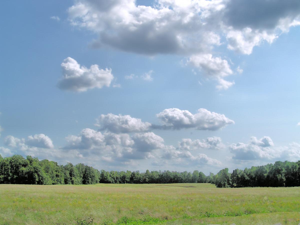 Путешествие маленького облачка