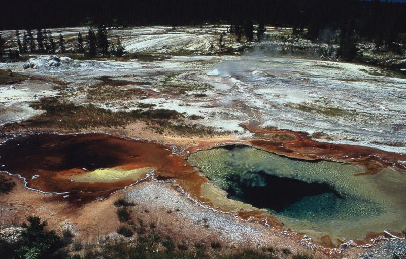 Йеллоустонский национальный парк (22)