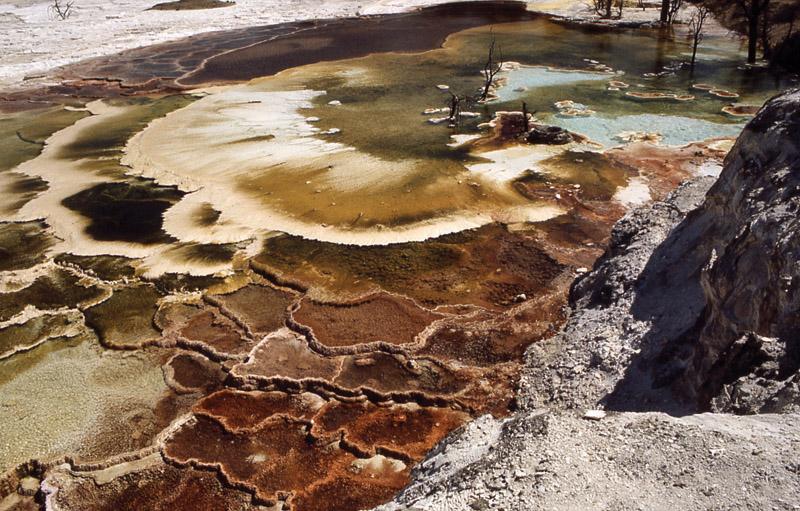 Yellowstone - Йеллоустонский национальный парк (20)