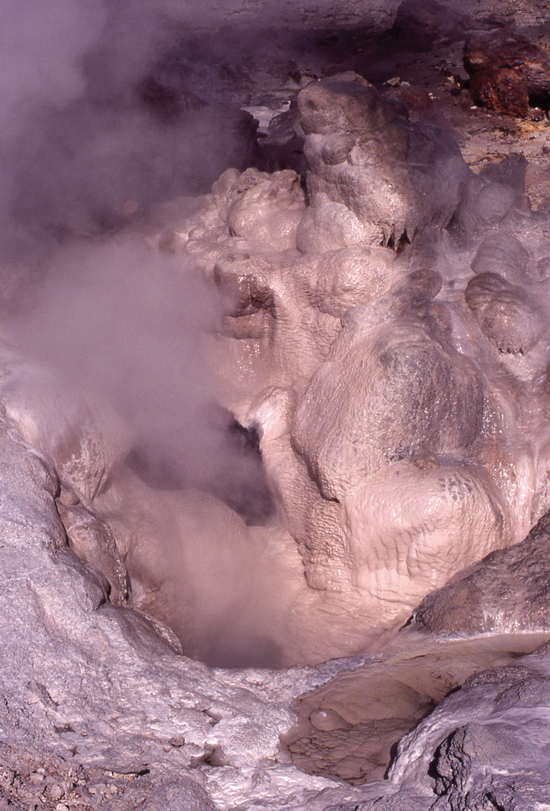 Yellowstone - Йеллоустонский национальный парк (11)