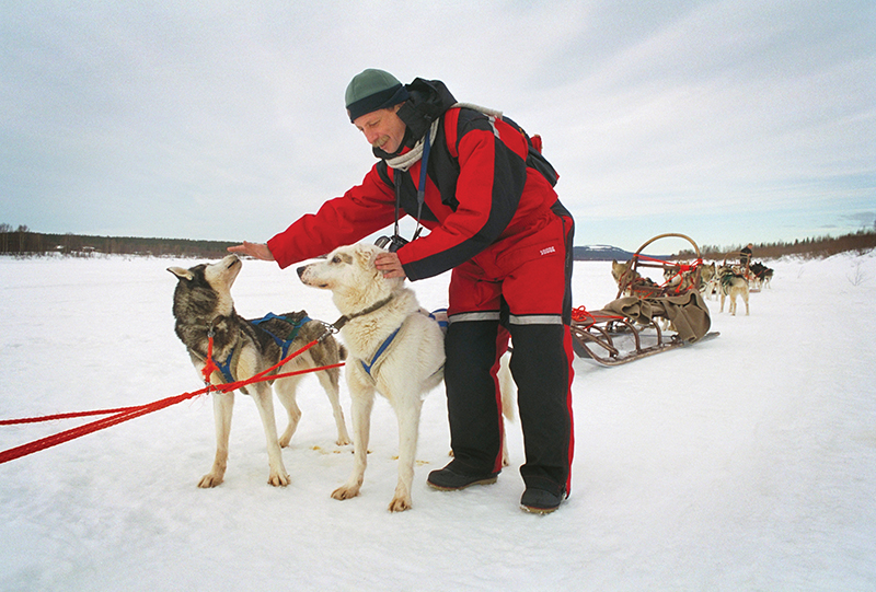 Собачьи упряжки. Финляндия (Suomi) Лапландия