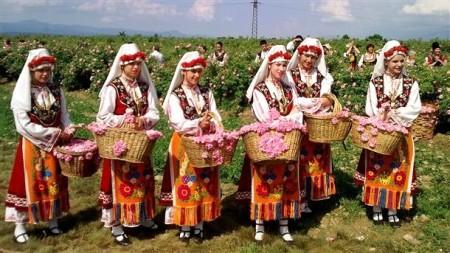 bulg rose fest