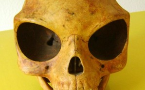 Загадка силендсткого черепа