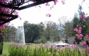 kamfaeng