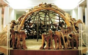 Украинское сокровище — Мезинская палеонтологическая стоянка